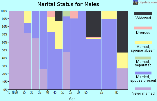 Zip code 18322 marital status for males