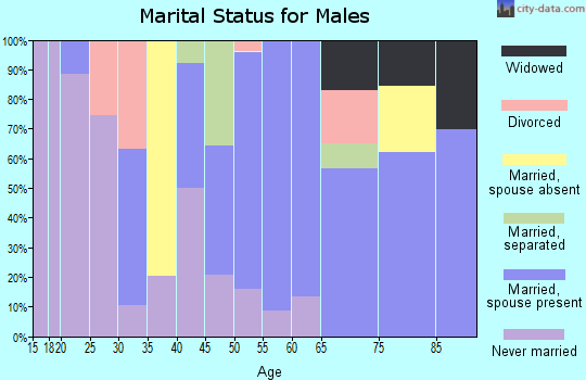 Zip code 18343 marital status for males