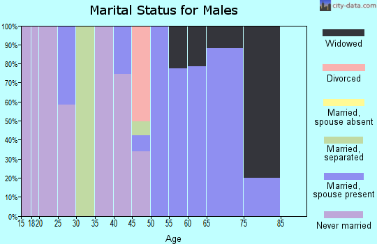 Zip code 18347 marital status for males