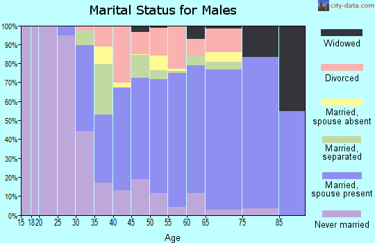 Zip code 18424 marital status for males
