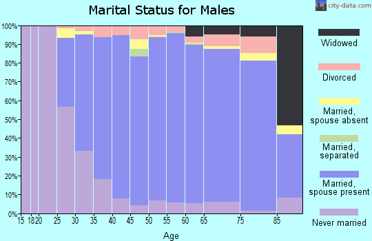 Zip code 18940 marital status for males