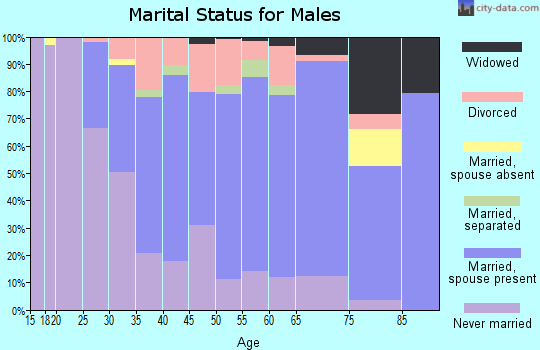 Zip code 19056 marital status for males