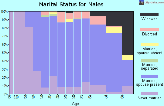 Zip code 19064 marital status for males