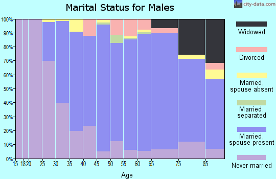 Zip code 19073 marital status for males
