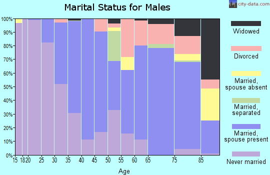 Zip code 19078 marital status for males