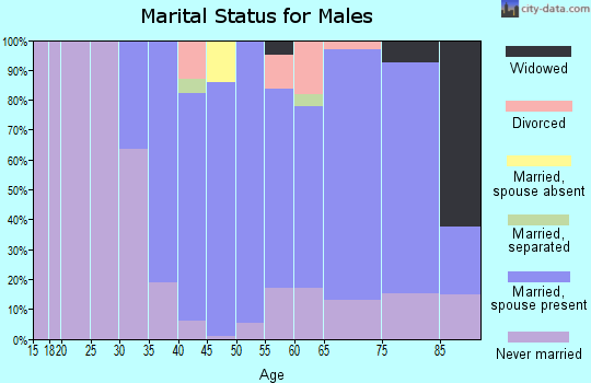 Zip code 19085 marital status for males