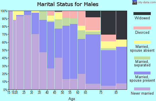 Zip code 19150 marital status for males