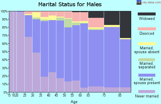 Zip code 19403 marital status for males