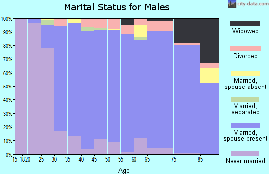 Zip code 19438 marital status for males