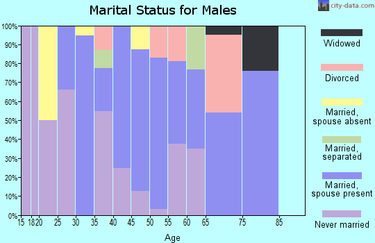 Zip code 19503 marital status for males