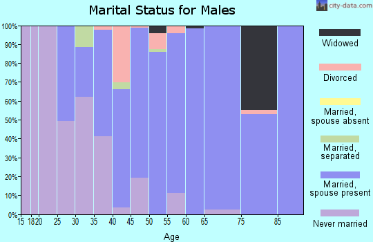 Zip code 19547 marital status for males