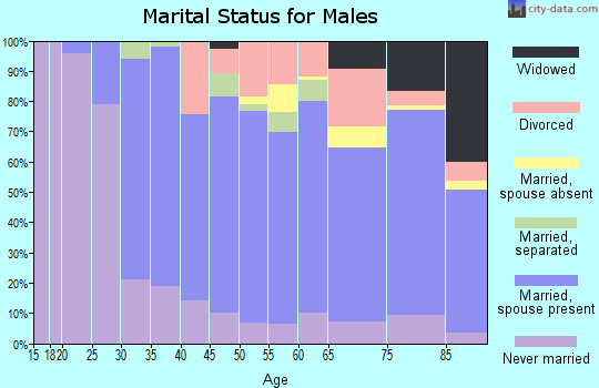 Zip code 19565 marital status for males
