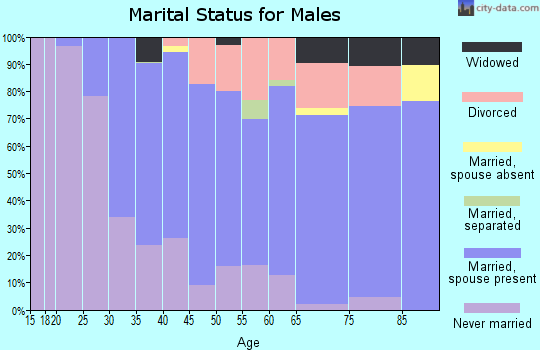 Zip code 19609 marital status for males