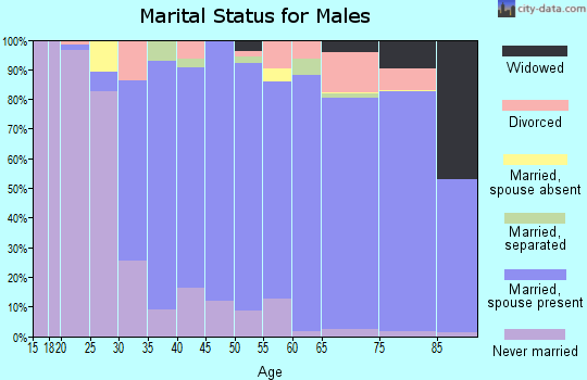 Zip code 19610 marital status for males