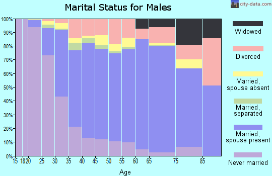 Zip code 19702 marital status for males