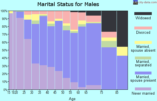 Zip code 19904 marital status for males