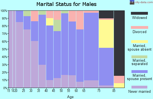 Zip code 19950 marital status for males