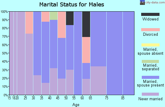 Zip code 19954 marital status for males