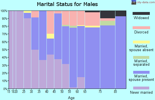 Zip code 19970 marital status for males
