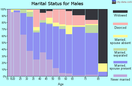 Zip code 19973 marital status for males