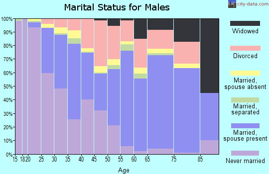 Zip code 19977 marital status for males