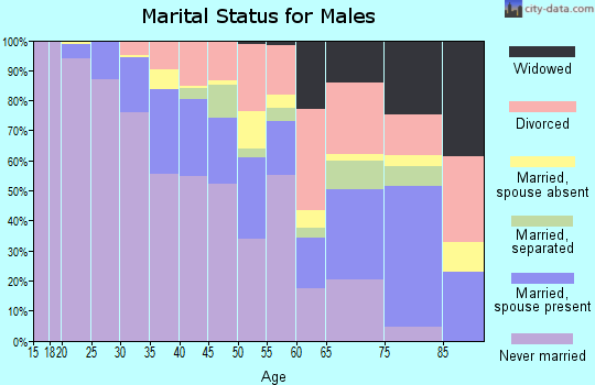 Zip code 20032 marital status for males