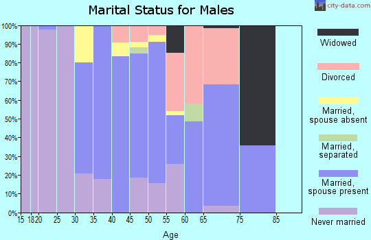 Zip code 20115 marital status for males