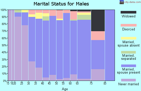 Zip code 20120 marital status for males