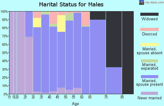 Zip code 20141 marital status for males