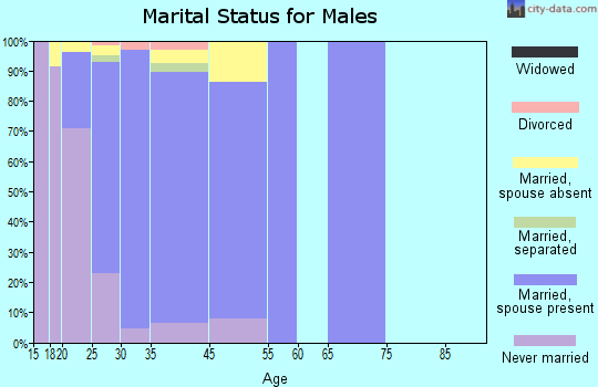 Zip code 20336 marital status for males