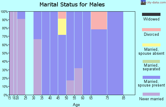 Zip code 20624 marital status for males