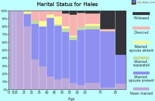 Zip code 20735 marital status for males