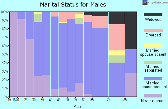Zip code 20736 marital status for males