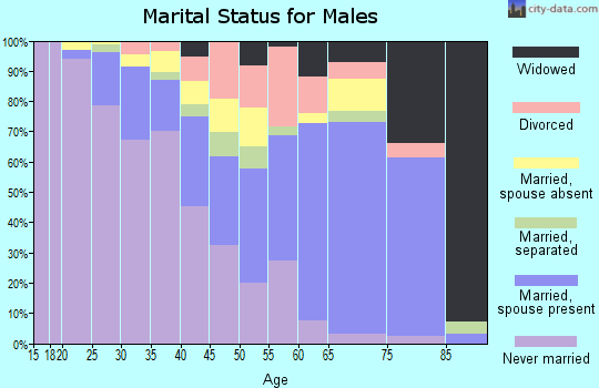 Zip code 20745 marital status for males