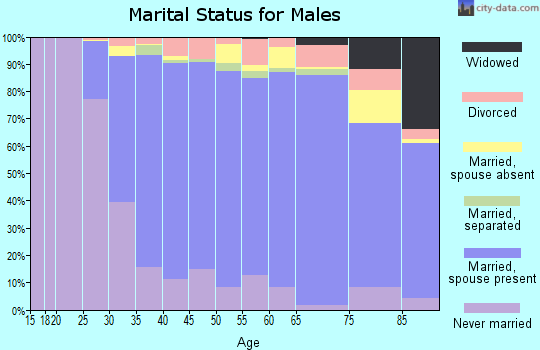 Zip code 20815 marital status for males