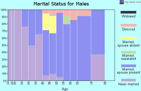 Zip code 20837 marital status for males
