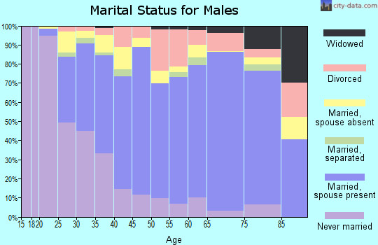 Zip code 20886 marital status for males
