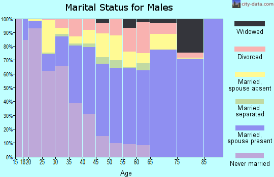 Zip code 20903 marital status for males