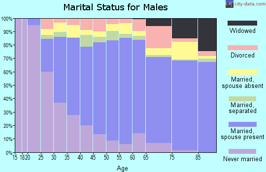 Zip code 20904 marital status for males
