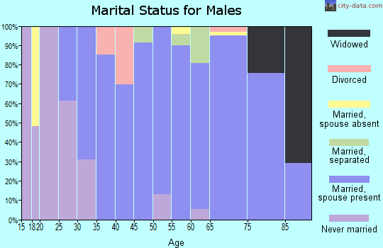 Zip code 21013 marital status for males