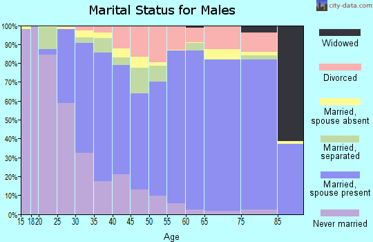 Zip code 21044 marital status for males
