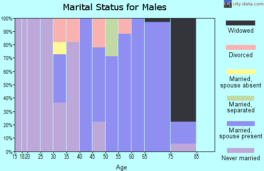 Zip code 21542 marital status for males