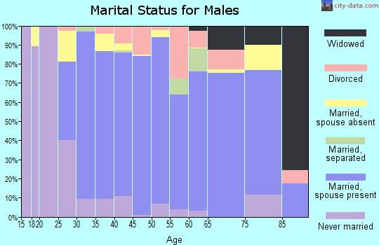 Zip code 21704 marital status for males