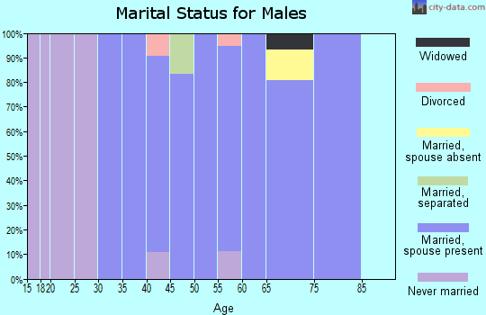 Zip code 21794 marital status for males