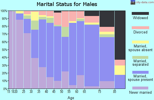 Zip code 21801 marital status for males