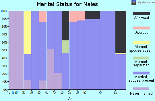 Zip code 21849 marital status for males