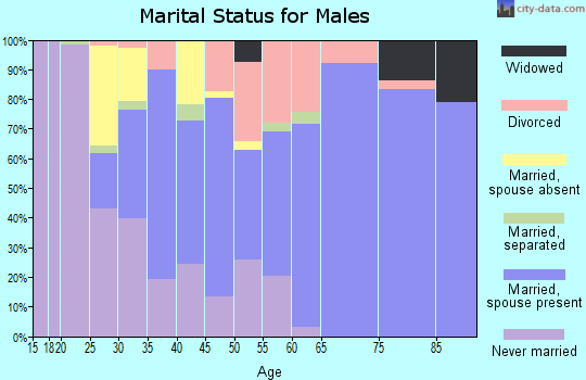 Zip code 21863 marital status for males