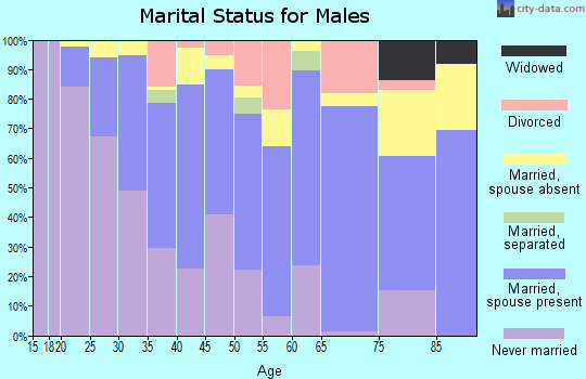 Zip code 22044 marital status for males