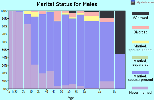 Zip code 22182 marital status for males