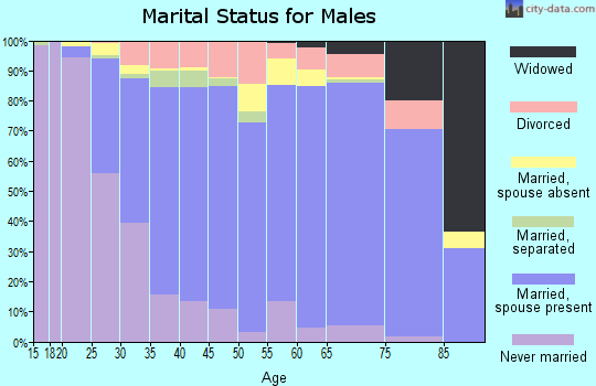 Zip code 22192 marital status for males